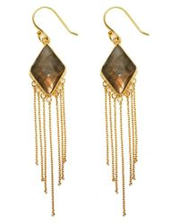 Argento Vivo | Metallic Stone Fringe Drop Earrings | Lyst