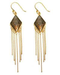 Argento Vivo - Metallic Stone Fringe Drop Earrings - Lyst