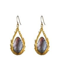 Alexis Bittar - Gray Maldivian Feathered Drop Earring With Iolite Doublet - Lyst