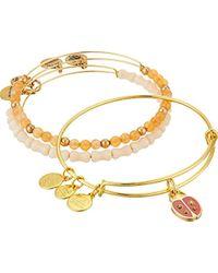 ALEX AND ANI Metallic Cosmic Messages - Ladybug Set Of 3 Charm Bangle (rafaelian Silver) Bracelet
