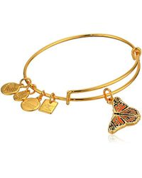 ALEX AND ANI - Metallic Charity By Design, Monarch Butterfly Charm Bangle Bracelet, Shiny Gold, Expandable - Lyst