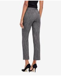 Ann Taylor - Black The Tall Ankle Pant In Herringbone - Kate Fit - Lyst