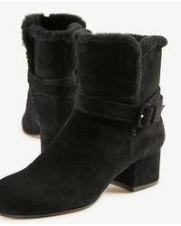 Ann Taylor - Black Sidney Shearling Buckle Booties - Lyst