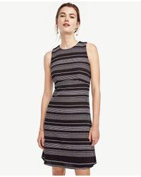 Ann Taylor   Gray Stripe Tweed Curve Seam Flare Dress   Lyst