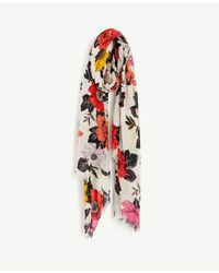 Ann Taylor - Multicolor Sundrenched Floral Scarf - Lyst