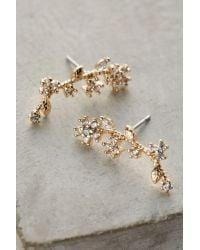 Anthropologie - Metallic Climbing Petal Post Earrings - Lyst