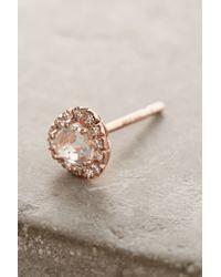 Suzanne Kalan - Multicolor 14k Gold Gemstone Earrings - Lyst