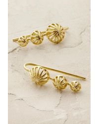 Anna + Nina - Metallic Lilja Earrings - Lyst