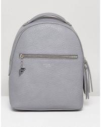 Fiorelli - Gray Anouk Mini Backpack In Grey - Lyst
