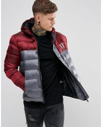 11 Degrees - Puffer Jacket In Gray With Burgundy Panel for Men - Lyst