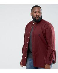 Polo Ralph Lauren | Red Plus Poplin Shirt In Burgundy for Men | Lyst
