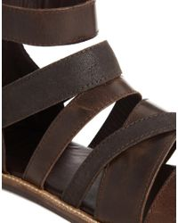 ASOS - Gladiator Sandals In Brown Leather - Lyst