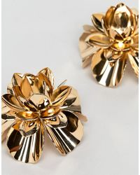 ASOS - Metallic Design Statement Earrings With Metal Flower Design In Gold - Lyst