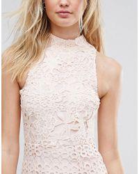 True Decadence - Pink Allover High Neck Premium Lace Midi Dress - Lyst