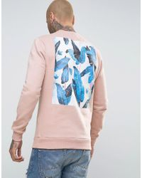 Friend or Faux - Pink Reefs Back Print Sweater for Men - Lyst