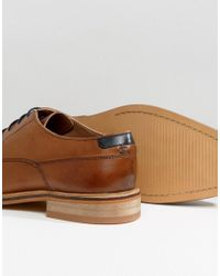 ASOS - Brown Derby Shoes In Tan Leather With Contrast Navy Lace for Men - Lyst