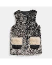 COACH - Gray Mongolian Shearling Vest  - Lyst
