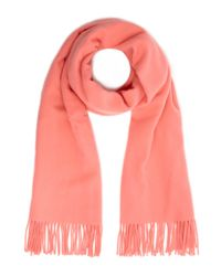 2nd Day - Light Pink Wool Knit Harmony Scarf - Lyst