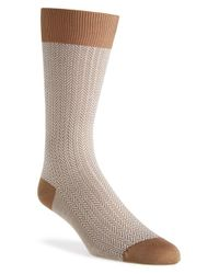 Pantherella | Brown 'fabian - Vintage Collection' Egyptian Cotton Blend Socks for Men | Lyst