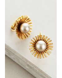 Elizabeth Cole | White Pearled Dandelion Drops | Lyst