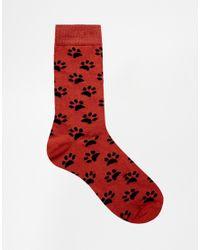 ASOS - Multicolor 3 Pack Socks With Dog Design for Men - Lyst