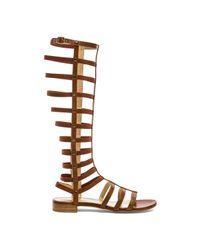 Stuart Weitzman | Brown Gladiator Sandals | Lyst