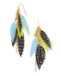 BaubleBar - Blue Ravyn Feather Earrings - Lyst