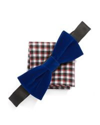 Original Penguin | Blue Bow Tie And Pocket Square Set for Men | Lyst