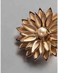 Dolce & Gabbana - Metallic Floral Earrings - Lyst