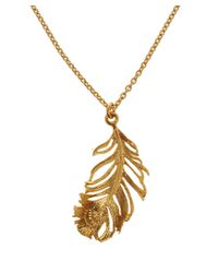 Alex Monroe | Metallic Gold-plated Peacock Feather Necklace | Lyst