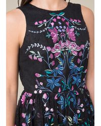 Bebe - Blue Embroidered Lace Dress - Lyst
