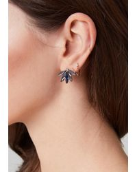 Bebe - Multicolor Ornate Stud Earring Set - Lyst