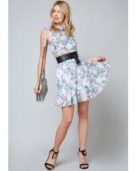 Bebe - Blue Palena Print Dress - Lyst