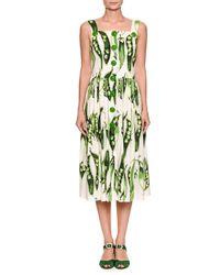 Dolce & Gabbana - Green Sleeveless Button-front Pea-print Cotton Poplin Midi Day Dress - Lyst
