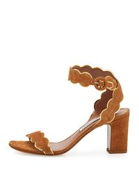 Tabitha Simmons - Brown Cloud Suede Ankle-wrap 75mm Sandal - Lyst