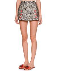 Dolce & Gabbana | Black Leopard-print Fil Coupe Mini Skirt | Lyst