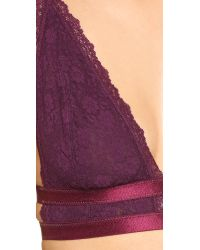 Free People - Purple Sweet Nothing Lace Call Me Darling Soft Bra - Lyst