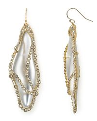 Alexis Bittar - Metallic Lucite Caged Dragonfly Wing Wire Earrings - Lyst