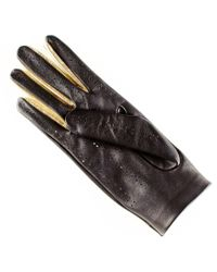 Black.co.uk - Black And Gold Leather Driving Gloves - Lyst
