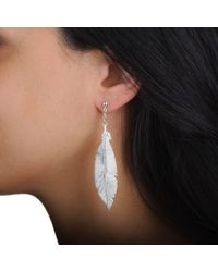 Black.co.uk - Multicolor Lara Sterling Silver Feather Earrings - Lyst