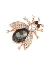 Carolee | Metallic Mom's The Word Beetle Brooch | Lyst