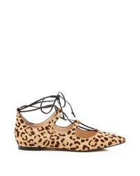 Vince Camuto - Brown Emmari Leopard Print Lace Up Pointed Toe Flats - Lyst