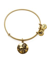 ALEX AND ANI - Metallic Leo Expandable Wire Bangle - Lyst