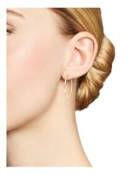 KC Designs - 14k Yellow Gold Diamond Micro Pavé Hoop Earrings - Lyst