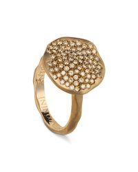 Antonini - Metallic 18k Rose Gold Round Anniversary Pavé Champagne Diamond Ring - Lyst