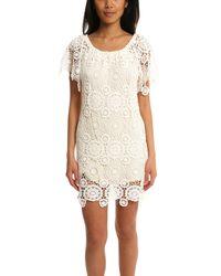 Nightcap   White Carmen Dress   Lyst