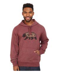Patagonia - Brown Bear Heaven Midweight P/o Hooded Sweatshirt for Men - Lyst