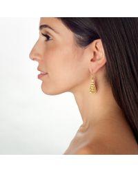 Wendy Mink | Metallic Gold Beaded Teardrop Earrings | Lyst