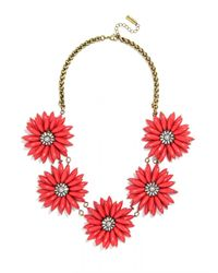 BaubleBar | Red Poppy Collar | Lyst