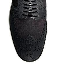 Cole Haan | Black Leather Wingtip Brogue Oxfords for Men | Lyst